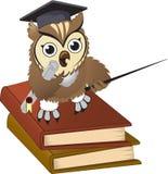 De leraar van de uil royalty-vrije illustratie