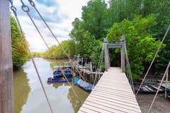 De Leren riem van de mangroven inTung Riek of Gouden Mangrovegebied bij Estuarium Royalty-vrije Stock Fotografie