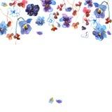 De leuke achtergrond van de waterverfbloem met blauwe pansies uitnodiging Stock Afbeeldingen