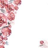 De leuke achtergrond van de waterverfbloem met roze rozen uitnodiging Royalty-vrije Stock Foto's
