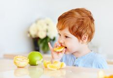 De leuke baby die van de roodharigepeuter oranje plakken en appelen proeven bij de keuken Royalty-vrije Stock Afbeelding