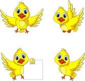 De leuke gele inzameling van het vogelbeeldverhaal Stock Afbeelding