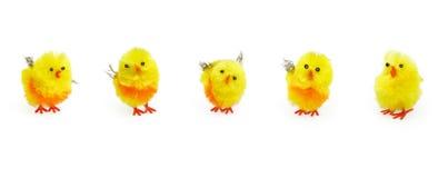 De leuke gele kuikens van Pasen voor seizoengebonden decoratie Royalty-vrije Stock Afbeeldingen