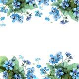 De leuke grens van de waterverfbloem Achtergrond met blauwe waterverf F Stock Foto