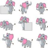 De leuke inzameling van het olifantsbeeldverhaal Stock Foto's