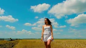 De leuke jonge donkerbruine vrouw met mooi lang haar en de witte korte zomer sundress loopt op gouden tarwegebied stock video