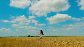 De leuke jonge donkerbruine vrouw met mooi lang haar in de witte korte zomer sundress loopt op gouden tarwegebied stock footage