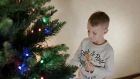 De leuke jongen eet de peperkoekmens dichtbij nieuwe jaar boom en het hangen van het terug naar de boom stock video