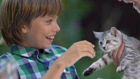 De leuke jongen krijgt aanbiddelijk katje aangezien het verjaardagsgeschenk, droom waar huis voor kat komt stock video