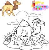 de leuke kameel loopt in de woestijn, die boek kleuren stock fotografie