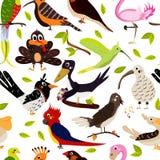 De leuke naadloze textuur van het vogelontwerp op witte achtergrond De stijl van het beeldverhaal Vector Royalty-vrije Stock Foto's