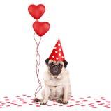 De leuke pug zitting van de puppyhond neer op confettien die, die partijhoed dragen en rood die hart houden vormde ballons, op wi Royalty-vrije Stock Fotografie