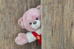 De leuke teddybeer zegt Hello Stock Afbeeldingen