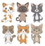 De leuke van de kattenrassen van de beeldverhaalstijl binnenlandse inzameling van de de tekeningen vectorillustratie vector illustratie