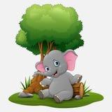 De leuke zitting van de babyolifant onder boom Royalty-vrije Stock Fotografie
