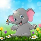 De leuke zitting van de babyolifant op grasachtergrond Stock Afbeeldingen