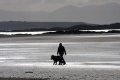 De leurder van de hond op het strand Stock Foto