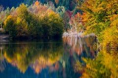 De levendige kleuren van de herfst op meer Royalty-vrije Stock Fotografie