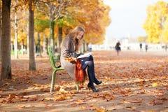 De lezing van het meisje in park stock fotografie