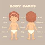 De lichaamsdelen van het babymeisje Stock Afbeeldingen