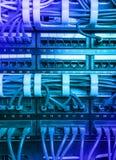 De lichtblauwe kabels van Internet van het flardkoord Stock Foto's