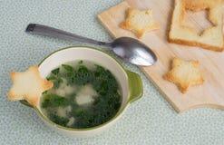 De lichte soep van de kippenspinazie Stock Fotografie