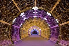 De lichte tunnel op Tverskoy-Boulevard Royalty-vrije Stock Foto