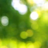 De lichten abstracte achtergrond van Defocused. Stock Afbeeldingen