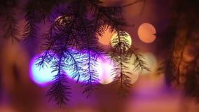 De lichten van de nachtstad door boomtakken die worden gezien stock footage