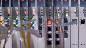 De lichten van de netwerkactiviteit knipperen in rood en groen binnen een kabinet van het gegevenscentrum 4K stock videobeelden