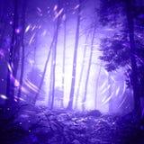 De lichten van de fantasieglimworm in donker mistig bos Royalty-vrije Stock Afbeelding