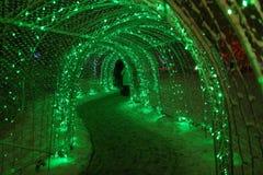 De lichten van het Lafargemeer Stock Foto