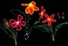 De Lichten van Kerstmis die als Bloemen gestalte worden gegeven Stock Afbeeldingen