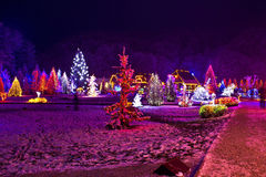 De lichten van Kerstmis in stadspark - fantasiekleuren Stock Foto
