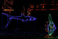 De Lichten van Kerstmis - Tropische Vissen en Haai Stock Foto's