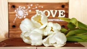 De liefde is in de lucht Royalty-vrije Stock Foto's