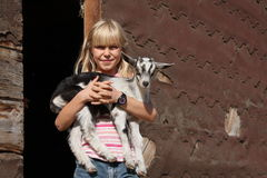De Liefde van de geit stock fotografie