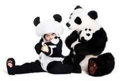 De liefde van de panda Stock Afbeelding