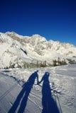 De liefde van de winter Stock Foto