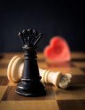 De liefde verovert Stock Fotografie