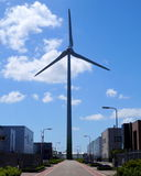 从De Lier的风车 库存照片