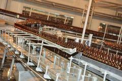 De lijn van de transportband met vele bierflessen royalty-vrije stock afbeelding