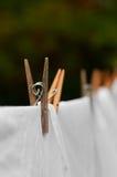 De lijn van de was en wasknijper stock foto's