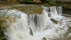 De Lijn van Great Falls van de blikslagerskreek stock footage
