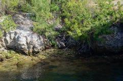 De lijn van het kanaalwater Royalty-vrije Stock Foto's