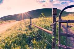 De lijn van de landschapsomheining bij de landweg royalty-vrije stock afbeelding