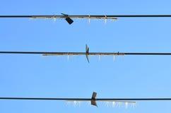 De lijnen van de kabel royalty-vrije stock afbeeldingen