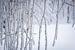 De Lijnen van de winter Royalty-vrije Stock Foto