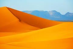 De lijnen van de woestijn Stock Foto