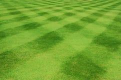 De lijnen van het gras Royalty-vrije Stock Foto